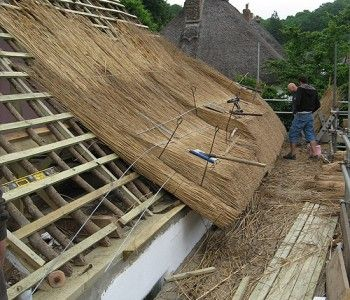 Milton Abbas (thatching onto new timbers)