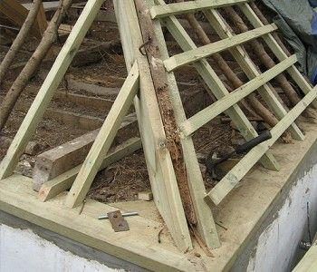 Milton Abbas (timber roof repair)