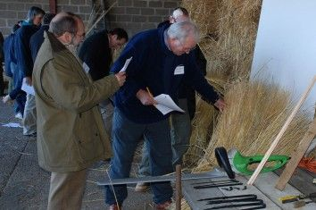 Inspecting and grading reed for thatching