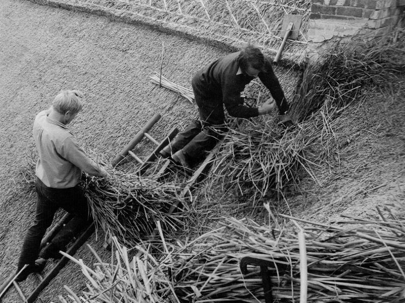 Our Roof Thatching History
