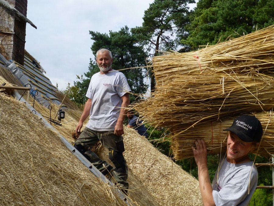 Dorset thatch repair service