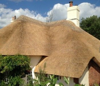 Thatching in Wiltshire
