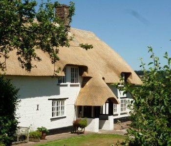 Turners Puddle, Dorset
